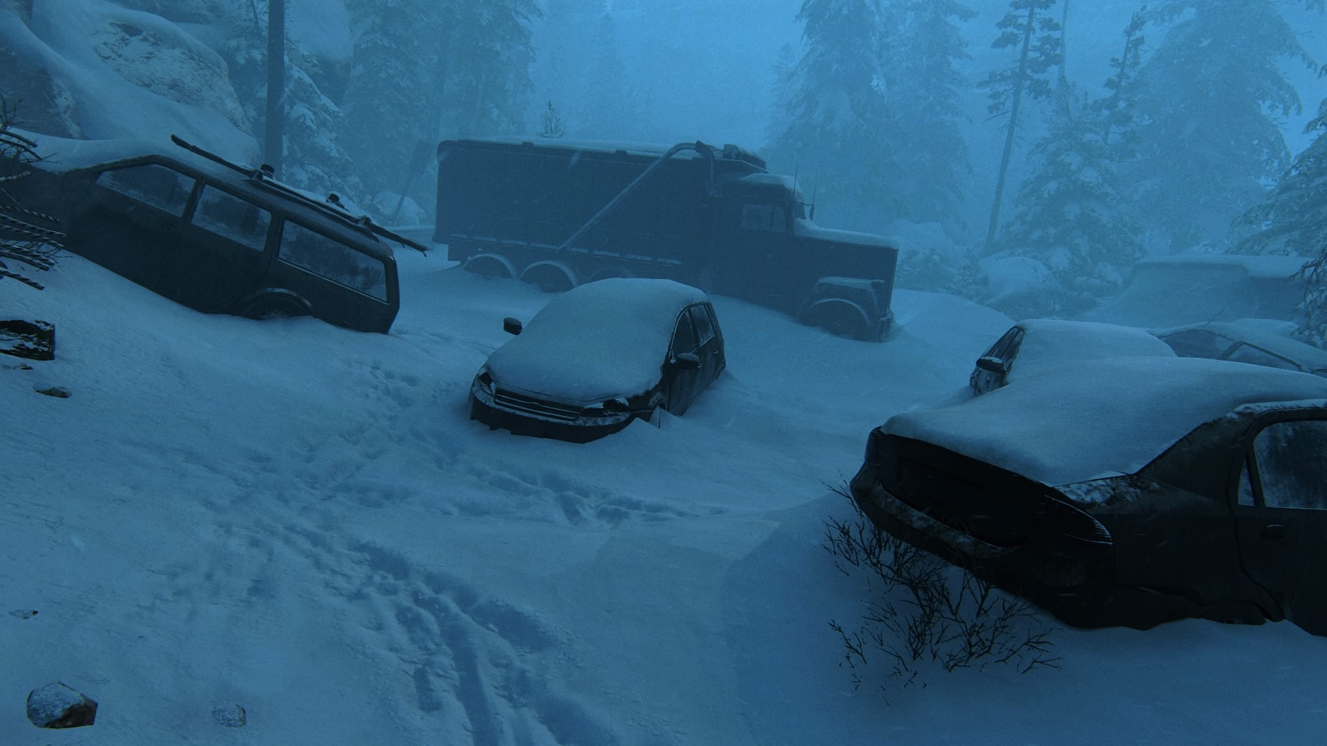... Können Aber Die Schönheit Einer Verlassenen Winterlandschaft Nicht Schmälern.