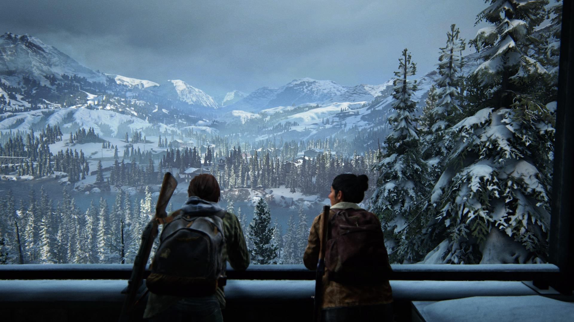 Der Anblick über Die Verschneite Waldlandschaft Ist Atemberaubend.